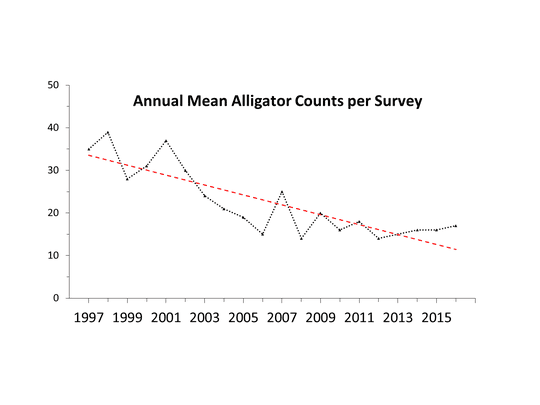 Annual mean alligator counts at Wakulla Springs