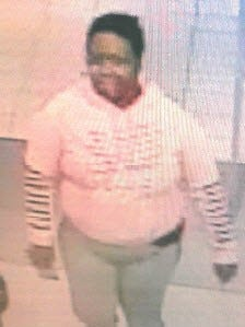 This woman is being sought by police in Westland as a suspect in a larceny and incidents of fraud.