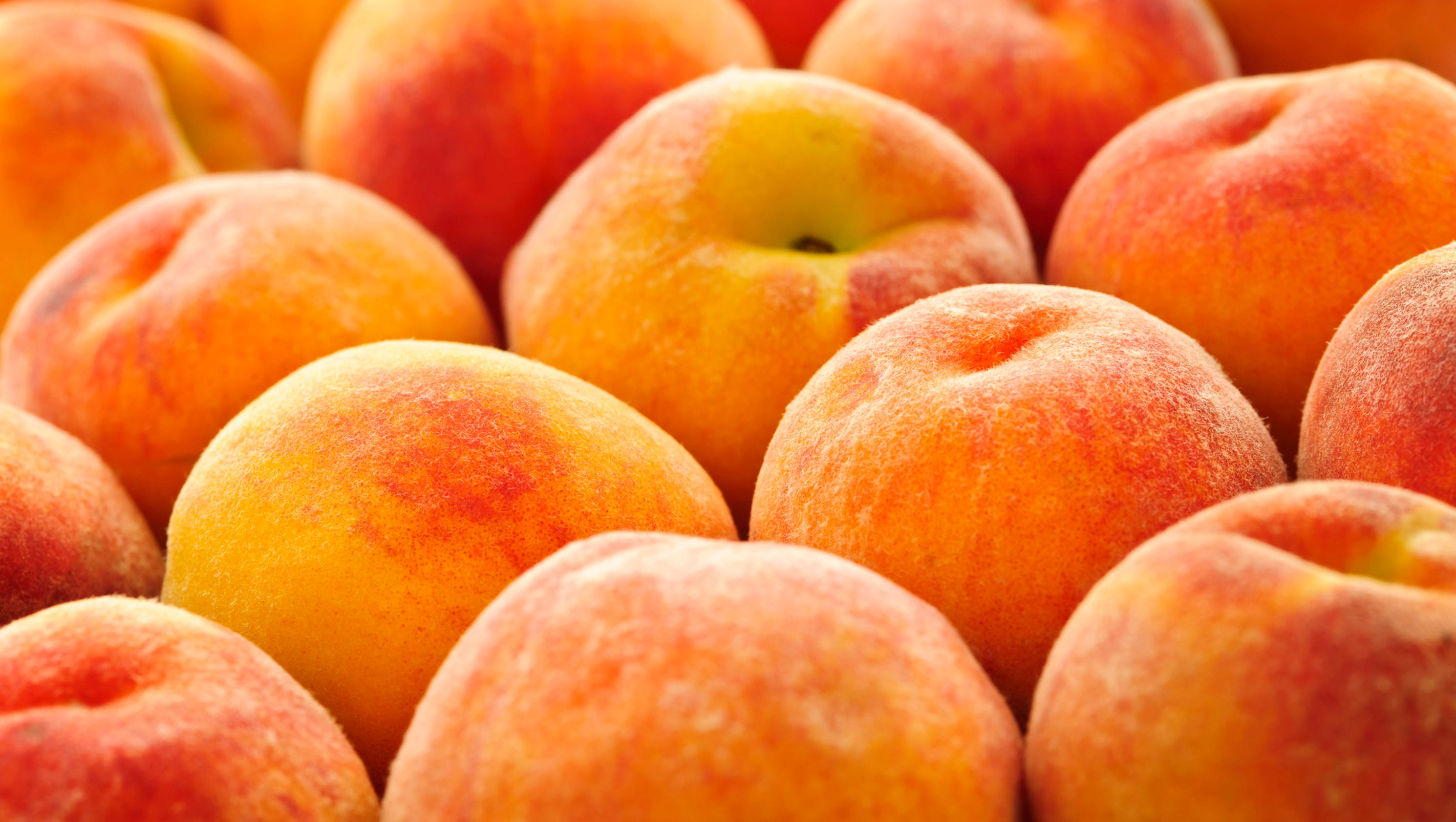 Peaches Food Truck