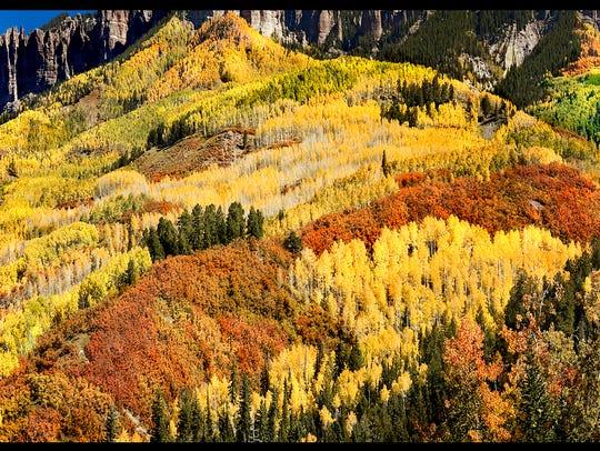 """Colorado Tapestry"""