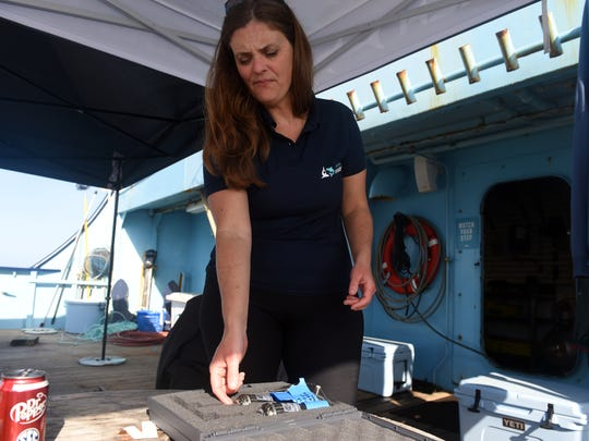 Irene Kingma, director of a Dutch shark and research conservation organization, looks over a new state-of-the-art tagging device designed by the European Space Agency with the help of engineer Peter De Maagt, that will be attached to sharks caught on the M/V OCEARCH during an expedition from Jan. 15 through Feb. 5. The new device detects when a satellite is overhead, then sends out real-time data about the sharks, as opposed to the tagging devices currently used which must have the information dowloaded from the device after after it detaches from the shark.