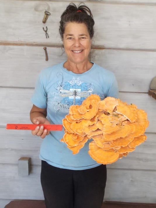 Carrie-Federici-courtesy-Asheville-Mushroom-Club.JPG