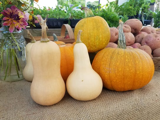 Get your locally grown pumpkins now at Asheville area