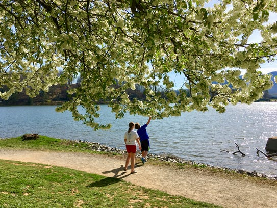 Spring at Lake Junaluska.