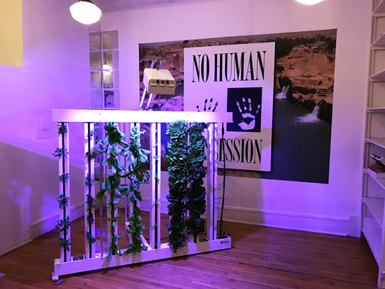 Kula Urban Farm's fully-sustainable hydroponic grow-tower