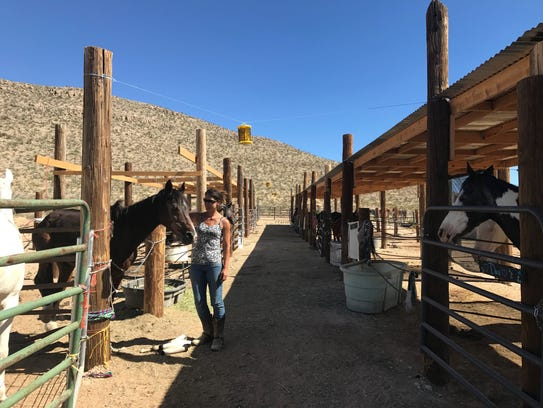 Victoria Hall spends time with her horses at Horses
