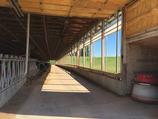 Inside the Stensland Family Farms barn. To the right,