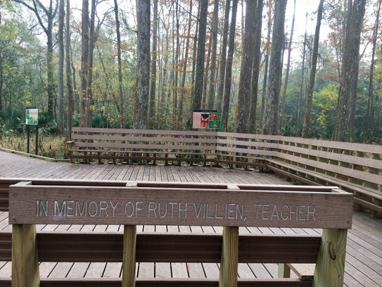 An educational area of the nature trail at Palmetto