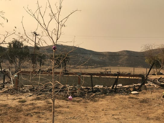 The Hannas' property after the Thomas Fire burned through last week.