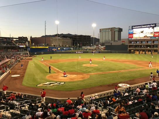 Chihuahuas game at dusk.