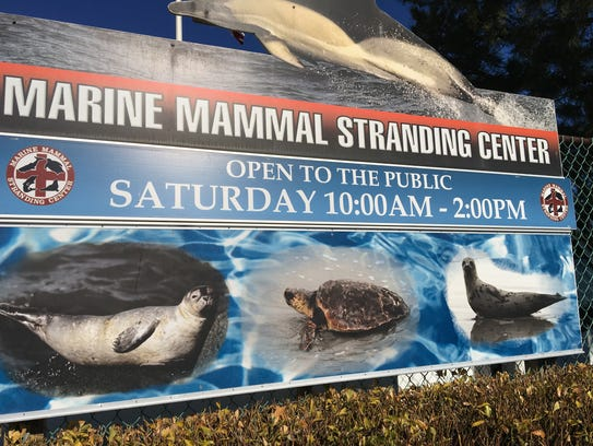 Sign in front of the Marine Mammal Stranding Center