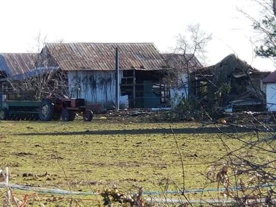 At least 25 dead horses were found on this property