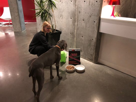 Pet-friendly HotelRED desk agent Camille Shibilsky