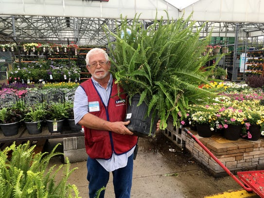 Plants for your porch and patio that you (almost) can't kill, include ferns, according to Dennis Troglen at Lowe's.