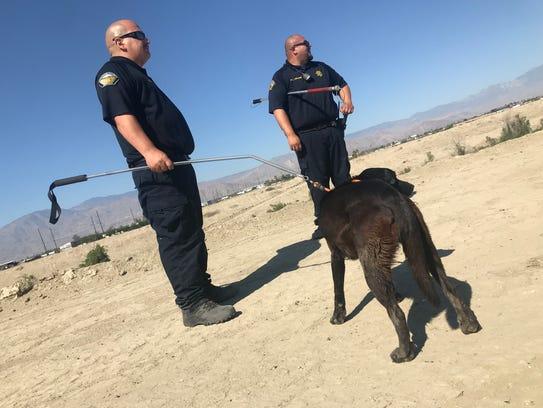 Riverside County animal control officers leash Sasha