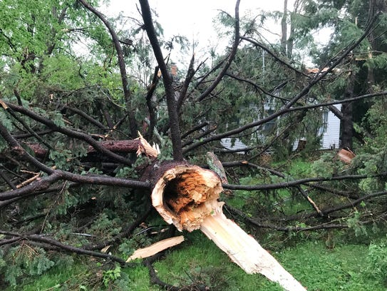 Tree damaged this house on Lake Shore Drive in Lake