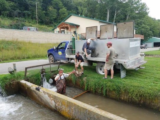 Fishing wisconsin wisconsin autos weblog for Wisconsin fishing license price