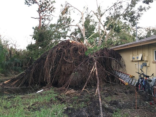 irma update  trash  yard debris pickup starting to resume