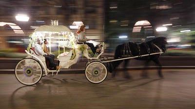 A couple takes a carriage ride through Piatt Park Downtown.