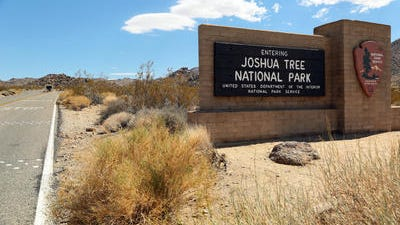 A body discovered Sunday at Joshua Tree National Park was identified as Nola Taylor, 84, who was reported missing on Sept. 11.