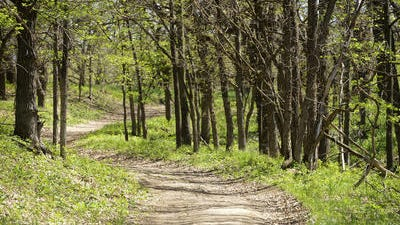 Hiking trail at Good Earth State Park at Blood Run, May 21, 2014.