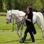 Blackwood home to one of the oldest horse breeding farms in NJ