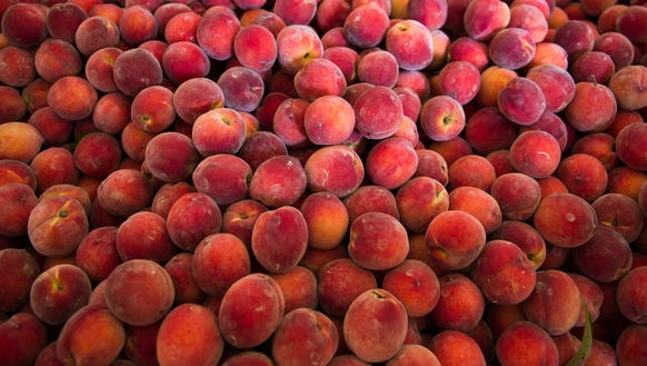 A crate of peaches are ready to be washed and sorted