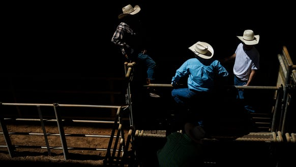 A group of bulls riders gather in the pens during the