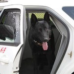 WOW To Do List: Collier County Sheriff K-9 Demonstration
