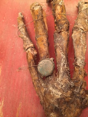 This hand and the ring it bears was found in a box belonging to Mike Lopez and his sister Maria.