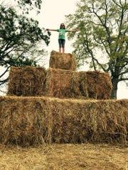 Fall into the season at Batey Farms, 3250 Wilkinson Pike in Murfreesboro.