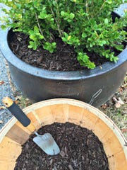 For insulation, add a layer of mulch to garden beds and pots that are too large to move indoors.