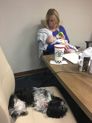 """All staff meetings at the Florida Network of Youth and Family Services usually has a baby and """"fur baby"""" present."""