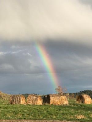 A promising rainbow touches down near Grass Range.