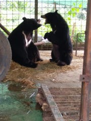 Nyan htoo playing with his brother.