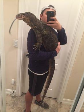 Golden Gate Estates Man Searches For Escaped 6 Foot Pet