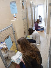 Youth can read to the animals at Humane Society of Sumner County as a way to give back.