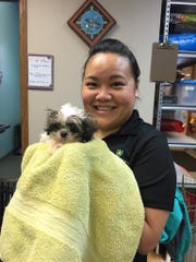Mee Lee helped bathe dogs at New Life Pet Adoption