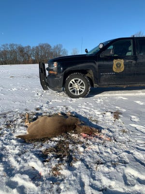 DNR wants help finding the killer of this buck that was left in a Noble township field.