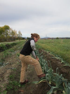 Sterling College grows about 20 percent of its food on campus. The college in Craftsbury is ranked No. 1 by the Real Food Challenge for its campus food.
