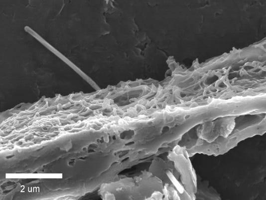 Carbon nano fiber