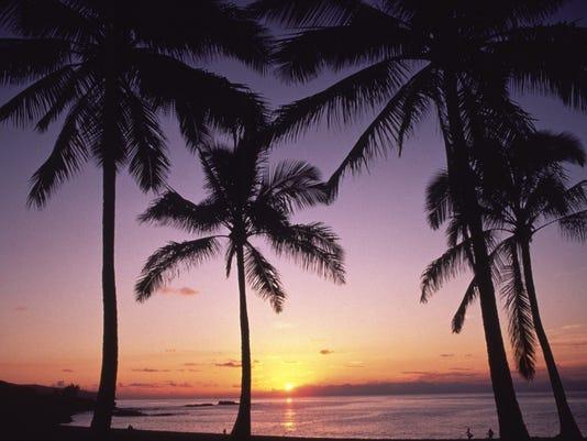 flag HAWAII-ICONS-1017.jpg