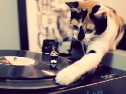 kitty disc jockey 121912