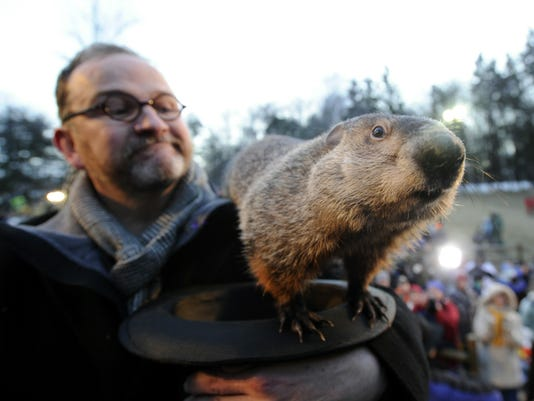 groundhog day phil