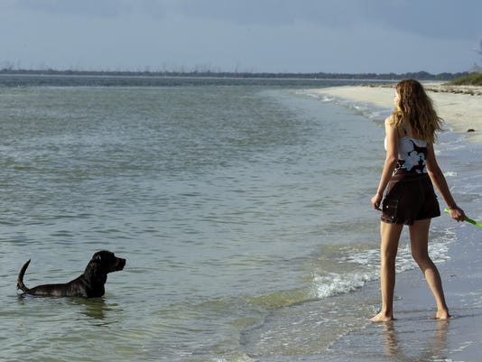 dog-friendly vacations - DO NOT OVERWRITE