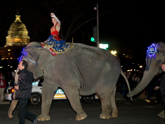 elephant drive-by shooting