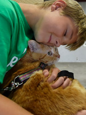 Isaac Rouer snuggles with his cat, Lucky, while waiting for his turn during the junior judging event at the Door County Fair Thursday, Aug. 2, 2018.