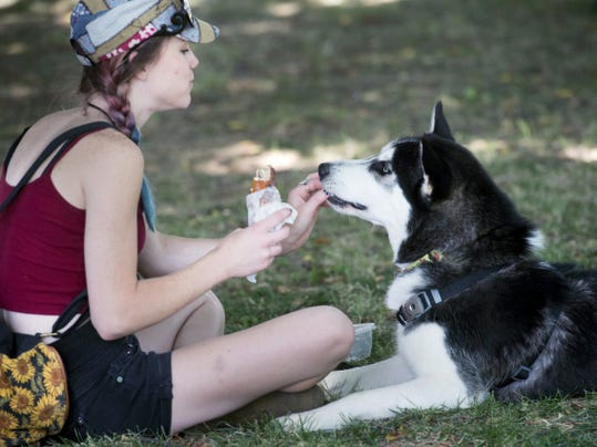 Shennen Summerfield, of Manchester Township, gives her dog Titan a taste of a chicken, bacon, ranch, cheese, stuffed soft pretzel during Foodstruck York at Penn Park Sunday.