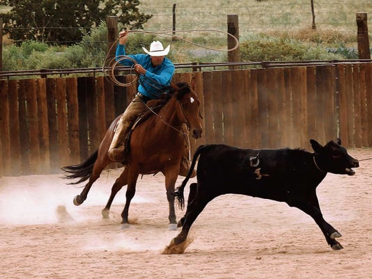 With rodeo and roping season moving into the heat of the year, both by thermometer and by calendar, cowboys are plotting, planning, driving and surviving while taking their best shots at making the finals.