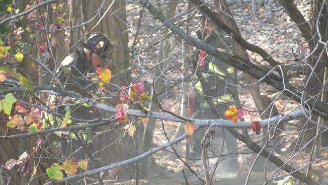 The fire broke out along the tracks near 566 Broad Street, Glen Rock.